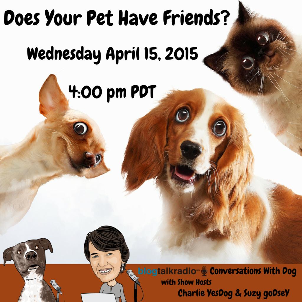 Blog Talk Radio Conversations With Dog